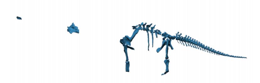 Dreadnoughtus schrani 骸骨化石數碼模擬。 三維圖檔案按此下載